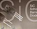 ROHM объявила о разработке карбид-кремниевых диодов Шоттки нового поколения