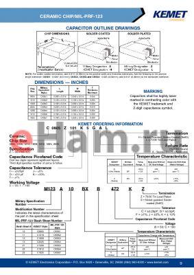 M12313BPC472DZ datasheet - CAPACITOR OUTLINE DRAWINGS